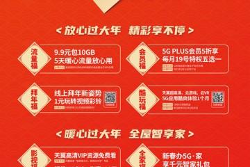 """中国电信山东分公司坚持以人民为中心, 多措并举响应""""就地过年"""""""