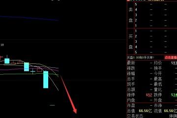 深夜惊雷上市公司遭立案调查停牌前连吃3跌停53966名股东被闷杀