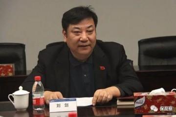 中宏人寿监事长刘剑为何落马